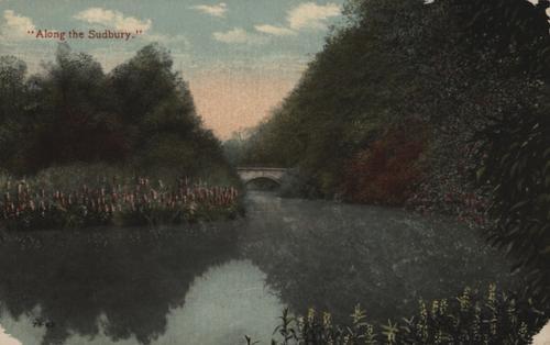 Along the Sudbury River